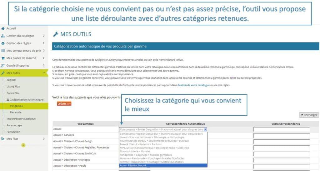 Categorisation_automatique_iziflux