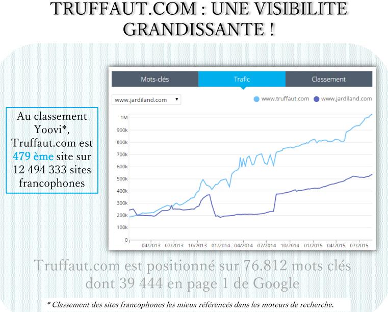 visibilite-truffaut