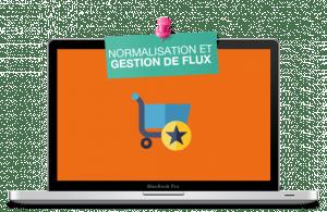 Normalisation flux produits marketplaces